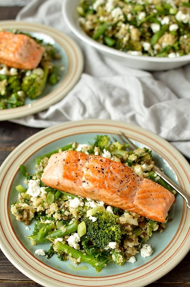 ... quinoa salmon salad zoe s citrus marinated salmon with a quinoa salad