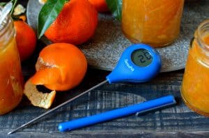 ThermoPop thermometer review
