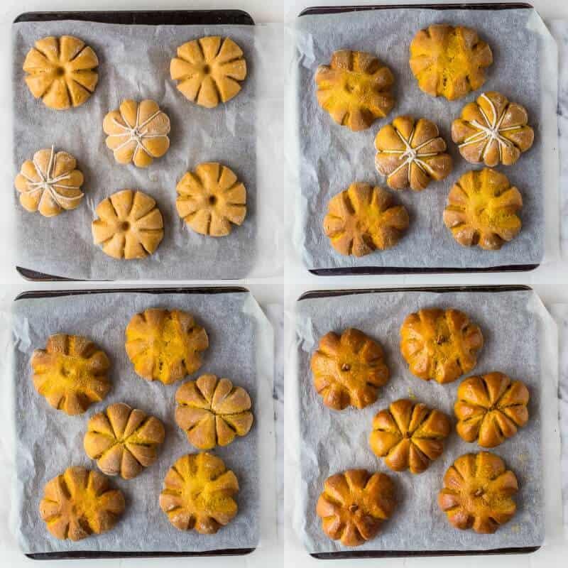 pumpkin dinner rolls step 8