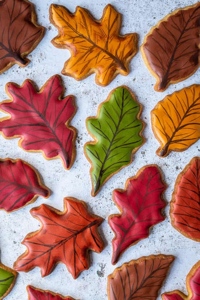 Coloured royal iced vegan maple autumn leaf cookies.