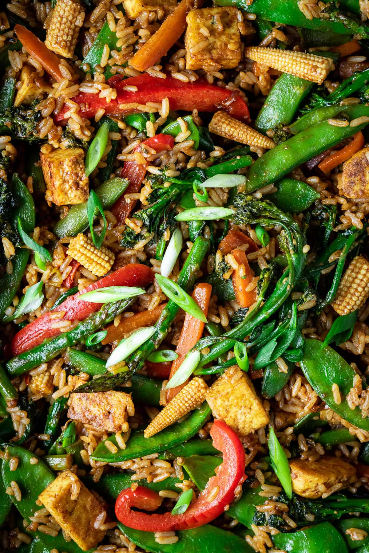close up of vegetable peanut fried rice