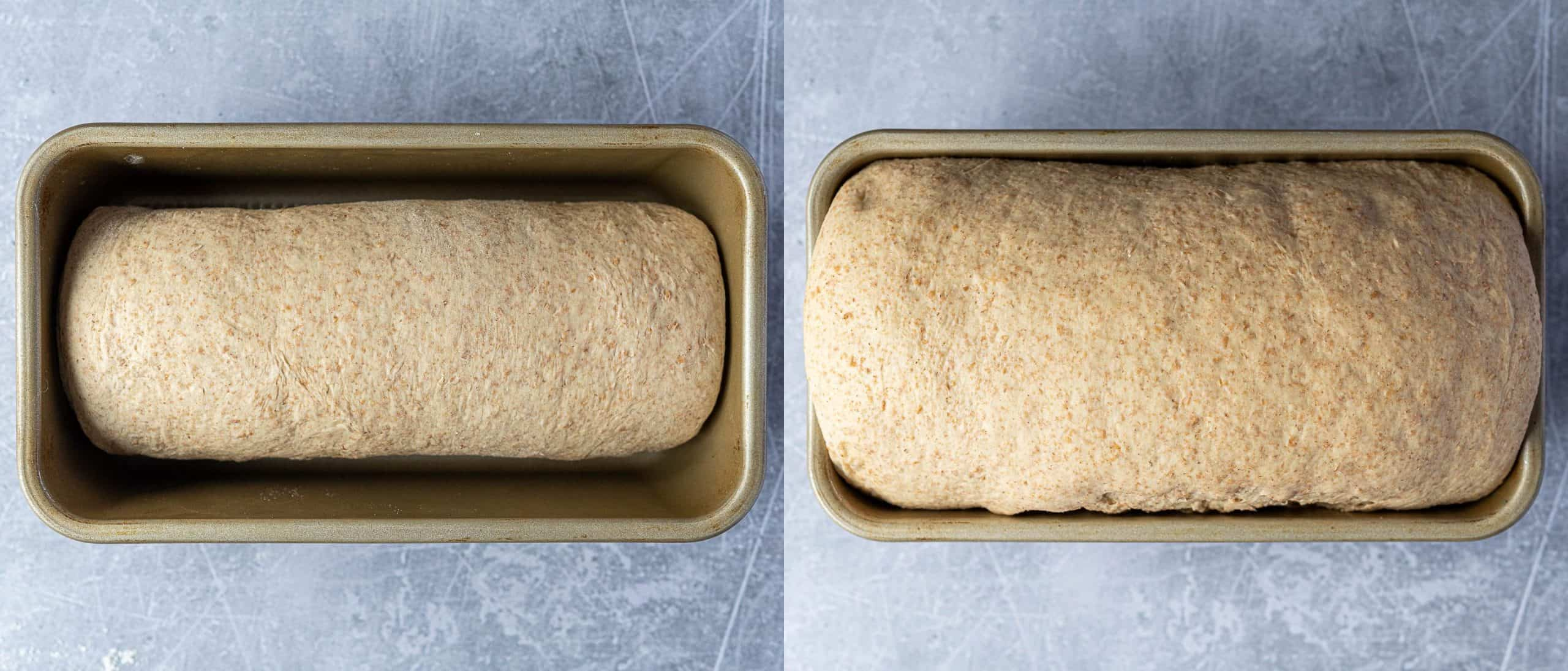 Step 5, a two image collage of the dough before and after it's second rise.